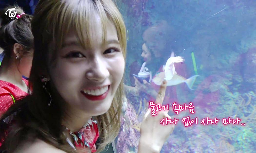 171209 TWICE TV6 EP.10 In 싱가포르 나연 정..