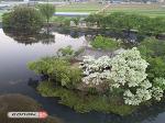 [밀양가볼만한곳] 이팝나무와 하나 되는 위양못