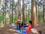 [산림청] 2017년 4월부터 국공립 치유의 숲 6곳에서 숲태교 프로그램 운영