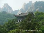 세상시름 잠시 잊고 한바탕 잘 놀다오는 곳.(수락산, 도봉산, 남한산성)