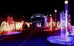 겨울여행지 추천, 보성차밭빛축제, 한국차문화공원, 율표솔밭해수욕장