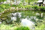 ( 태백 ) 낙동강의 발원지 황지연못
