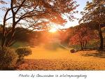 [월명동 사진] 월명동의 멋진 가을 풍경