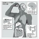 술이 두뇌, 신체기관에 미치는 악영향 및 음주요령