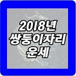 2018년 쌍둥이자리 운세 다재다능하다?