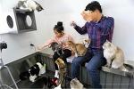 <청춘고양이연남점, 청춘고양이, 청춘고양이카페연남점, 연트럴파크, 연남공원, 홍대역3번출구, 경의숲길, 연남동, 청춘고양이카페, 연희동>고양이들의 집으로 놀러오세요 청춘고양이 연남점