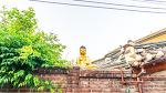 [사진] 북촌한옥마을에서 만난 부처님