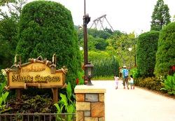 식물과 음악이 결합된 힐링공간, 뮤직가든(Music Garden)