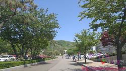 [인천]학생과학관 - 영종도 아이랑 가볼만한 곳