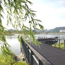 청주애견산책 세종호수공원 대박