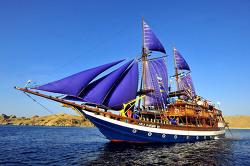 Komodo diving with Sea Safari Cruise, Indonesia
