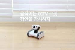 강아지 CCTV 앱봇 라일리 움직이는 CCTV로 집안을 감시