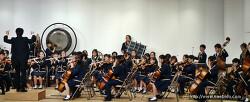 뭔가를 열심히 한다는 것 - 초등학교 오케스트라 대회를 본 소감