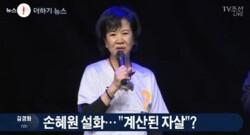 손혜원에 대한 비판과 변호 그리고 노무현과 문재인