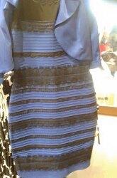 파검, 흰금 드레스 색상 논쟁으로 본 인간의 시각 시스템