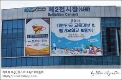 [적묘의 코이카]페이스페인팅,대한민국 교육기부,벡스코 방과후학교 박람회