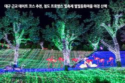 대구 근교 데이트 코스 추천, 청도 프로방스 빛축제 별빛동화마을 야경 산책