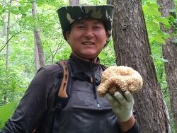 꽃송이버섯 (산원초)