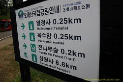 1805 평창, 강릉 1일 (2): 월정사 전나무숲을 산책하고 월정사에 들르다.