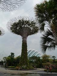 Singapore #07 - 가든스 바이 더 베이. 플라워 돔 ①