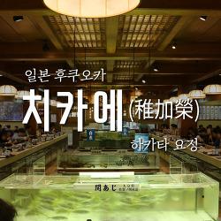 후쿠오카 여행 #35 활어전문 요정 : 치카에