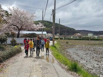 4해4색 섬으로 찾아가는 해양환경교육-진동만 생태모니터링