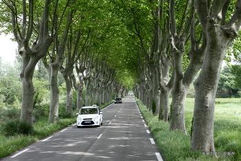 남프랑스에서 가장 기분 좋은 길