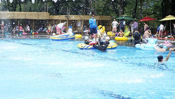 [남이섬 / 여름] 여름휴가는 수영장계의 사이다, 남이섬 워터가든!