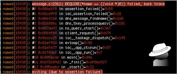[CVE-2015-5477] Bind(DNS Server) TKEY 서비스거부 취약점