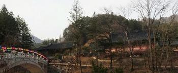 오대산 월정사 전나무숲길로 시작해 상원사까지