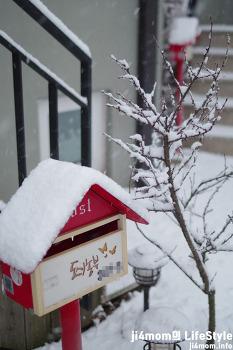 눈 내린 마을, 밤새 내린 눈, 설경, 겨울왕국