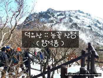 덕유산 :: 눈꽃 산행 후기 (향적봉)