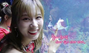 171209 TWICE TV6 EP.10 In 싱가포르 나연 정연 모모 사나 다현 채영 움짤