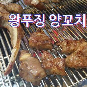 서현 왕푸징 양꼬치 ♪ 냄새 전혀 없는 양고기 맛집 메뉴추천 / 양갈비 솔직후기