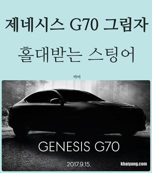 제네시스 G70 의 그림자, 홀대받는 기아차 스팅어