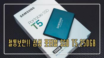 철통보안!! 삼성 포터블 SSD T5 250GB
