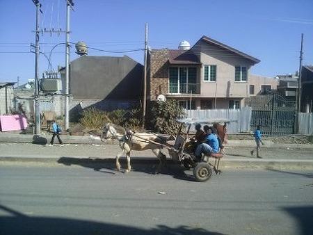 에티오피아, 아디스아바바 - Goro 지역에서 보냈던 시간들... 1편