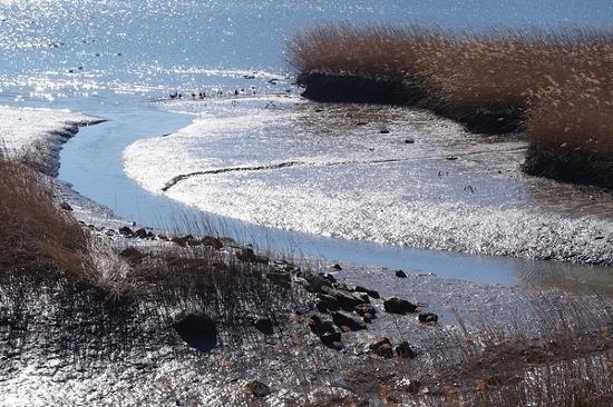 바다 갯벌 같은 하동 신월습지