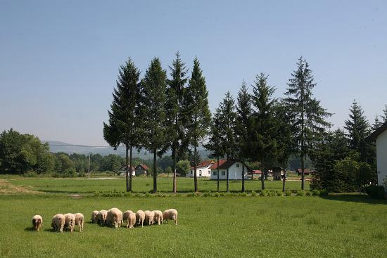 [보스니아-슬로베니아] 혼자 시작된 자전거여행