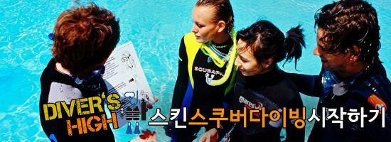 [스킨스쿠버다이빙 시작하기] #7 본격적으로 스쿠버다이빙 상담받기!