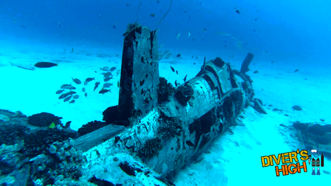 [필리핀 스쿠버다이빙] 야생이 살아있는 팔라완의 스쿠버다이빙 (렉,난파선 다이빙)