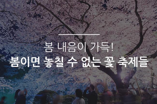 봄 내음이 가득! 봄이면 놓칠 수 없는 꽃 축제들