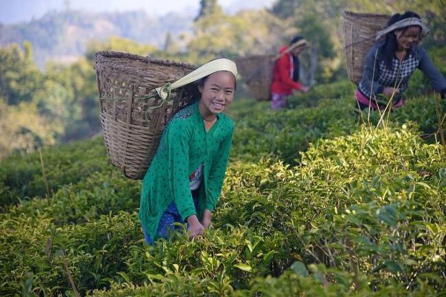 """네팔 여학생, """"선생님이 되면 학생들을 행복하게 해주고 싶어요"""""""