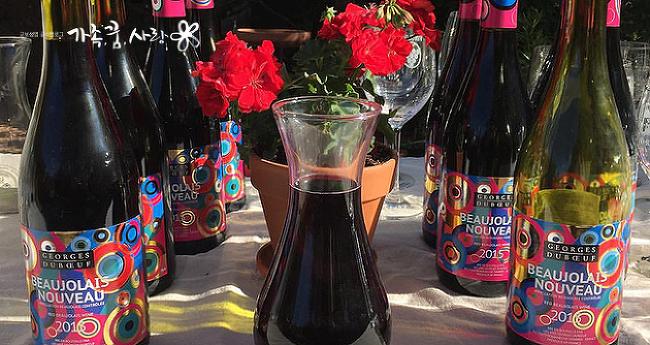 와인에 대한 모든 것, 와인 초보자들 모여라!