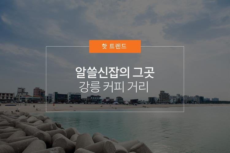 알쓸신잡의 그곳, 강릉 커피 거리