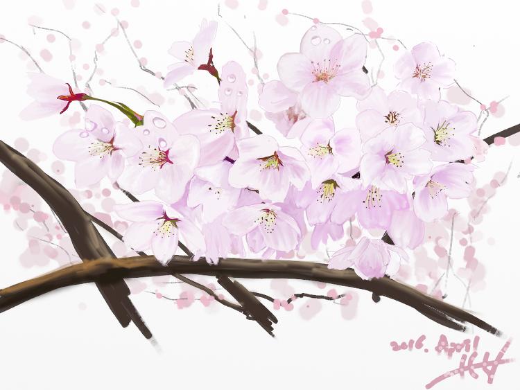 봄 꽃들을 그려보았어요.