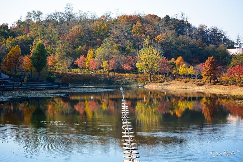 마지막 가을 풍경이 내려앉은 서서울호수공원 - 서울가볼만한곳
