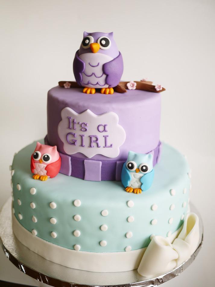 미국의 부엉이 테마의 베이비 샤워를 위한 케이크