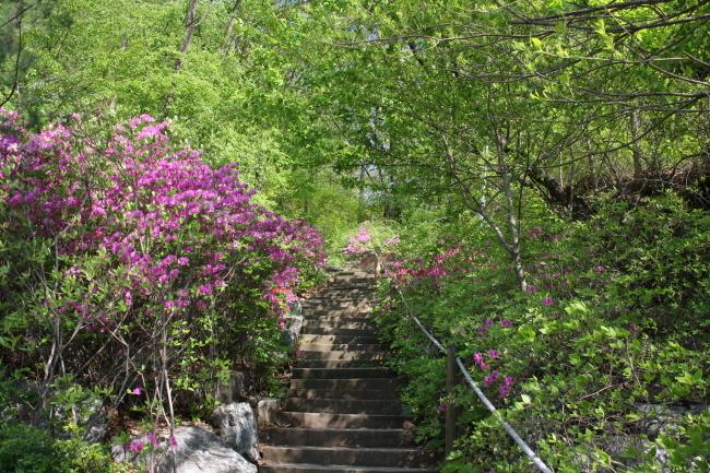 경기도 산본 한얼공원 추천