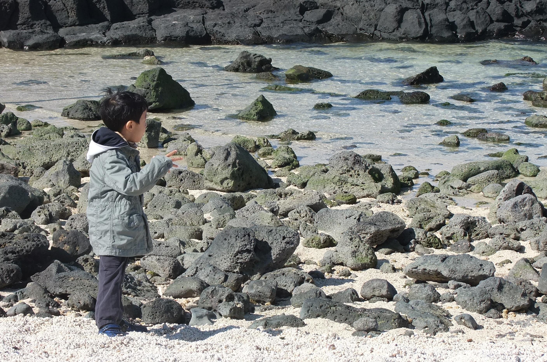 티스티로 2012 탁상 달력 사진 공모전 - 가을편